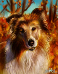 Autumn boi by light-askha