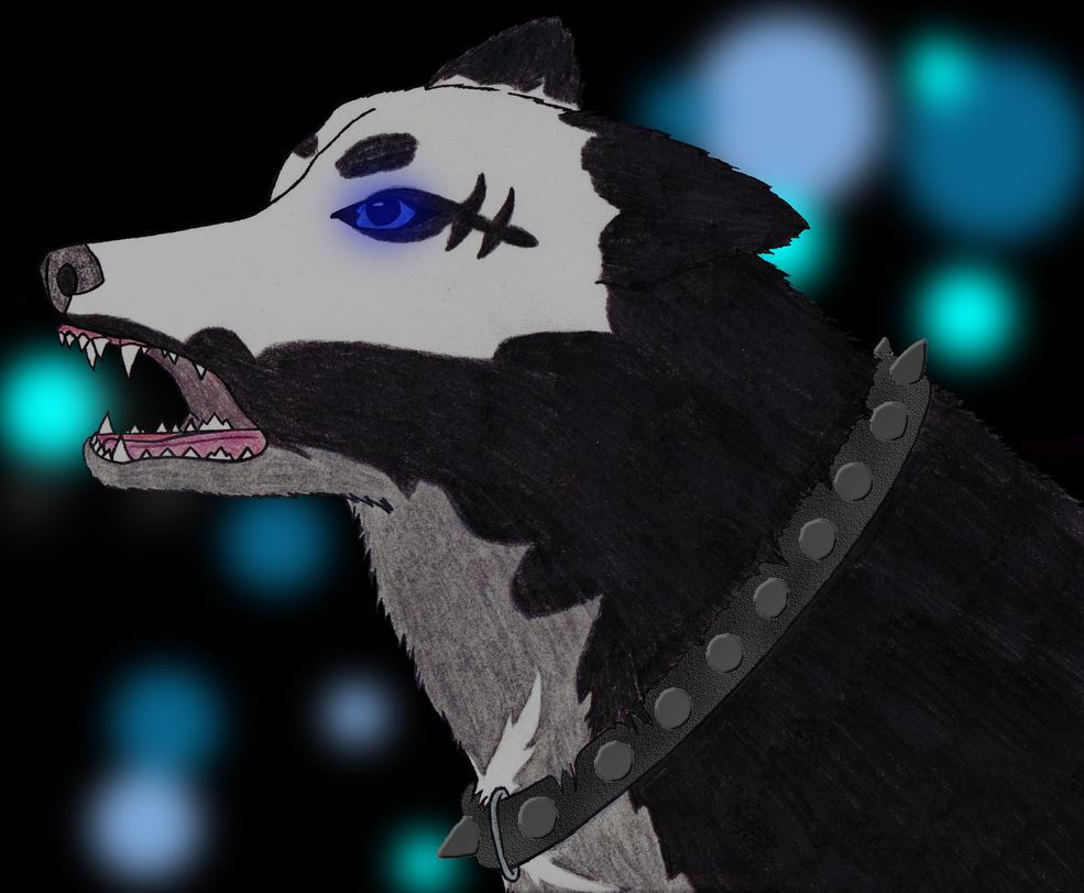Kasumi - Profile Updated by disturbeddragon