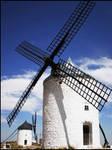 Pe urmele lui Don Quijote