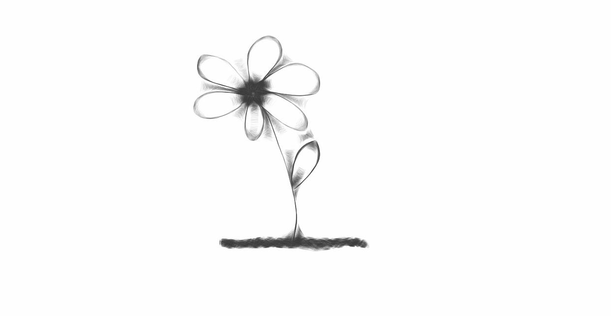 Flower Drawing by RavenRoo on DeviantArt