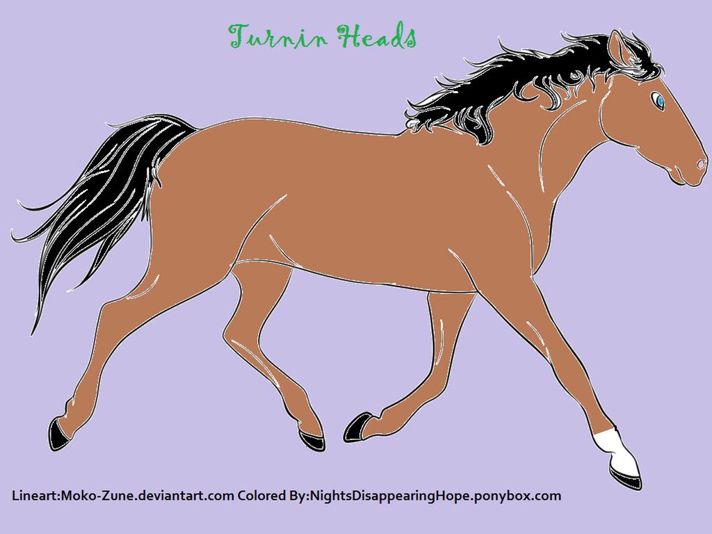 Horse Lineart by Adimina