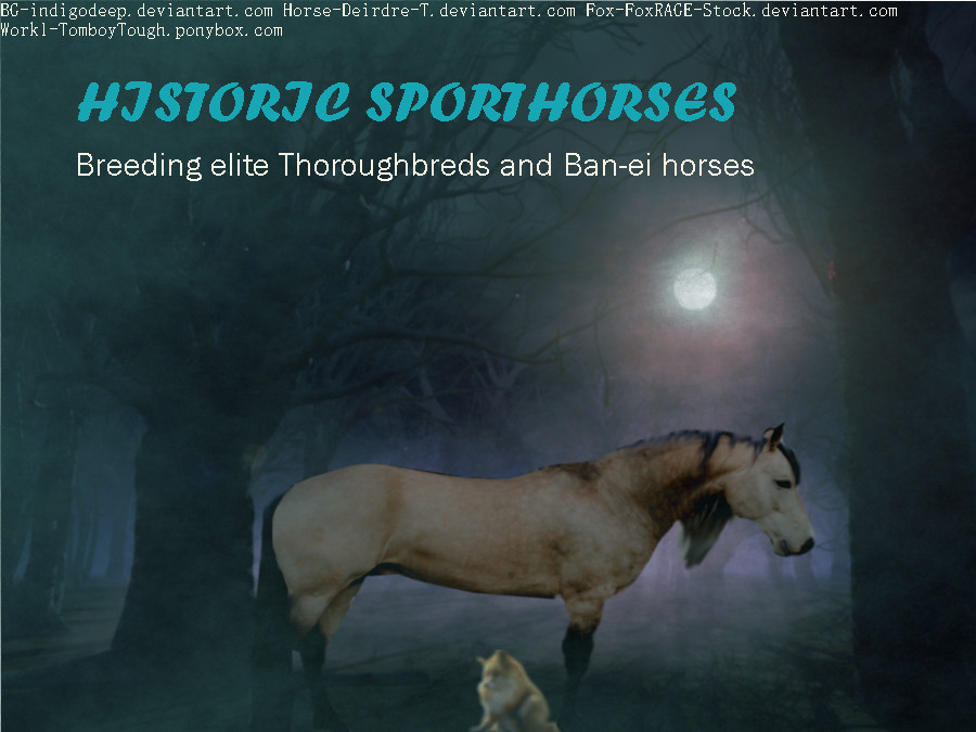 Historic Sporthorses contest entry by Adimina