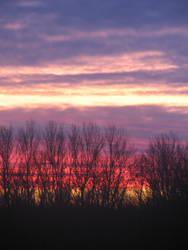 Dawn by MeFett