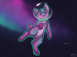 Space Cat by WolfSoldier89