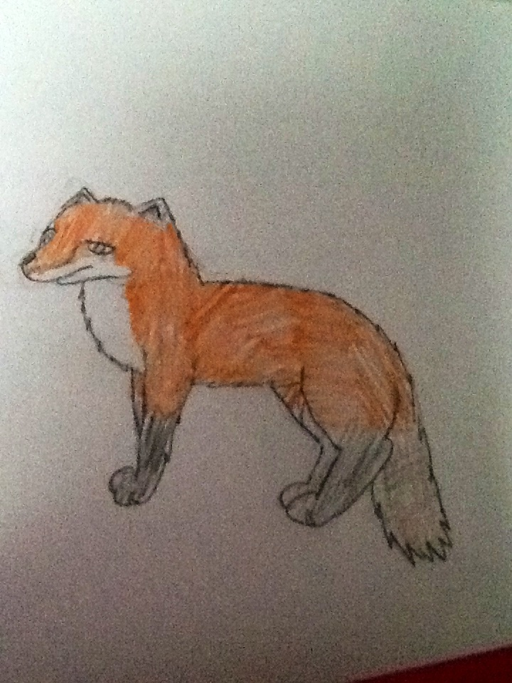 a badly drawn fox by biostings