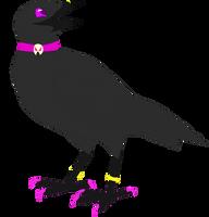 Gypsy Crow by seagaull