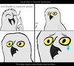 Owl Is Denied Snowcone