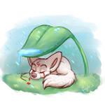 Albino Fox Sleeps