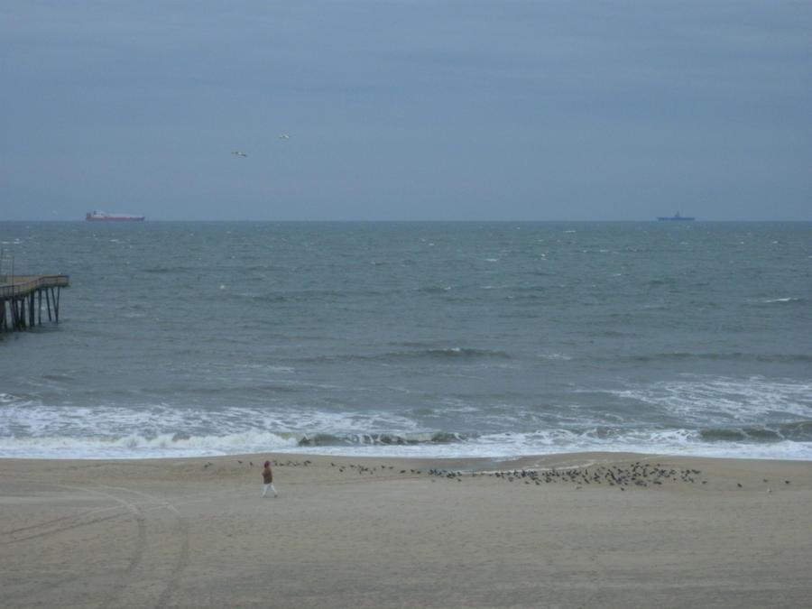 Speed dating händelser virginia beach