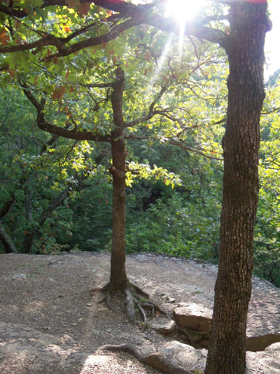 Heavener Runestone State Park by ravenarcana