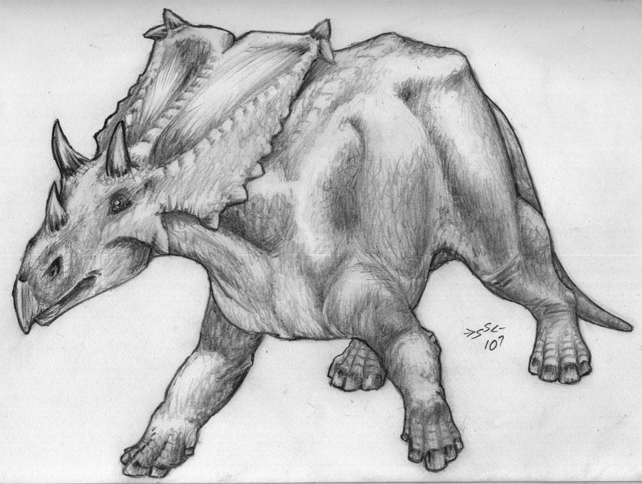 The Wall ( #Chasmosaurus Vs #Gorgosaurus ) by ...