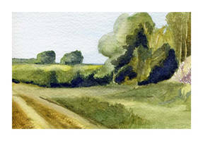 Country landscape 1