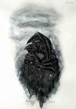 Shapeshifter Witch. Raven.