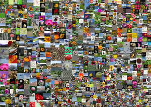 AllOurStock mosaic compilation