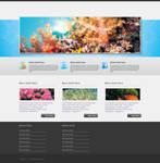 Corals - WP Theme