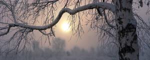 Winter etude