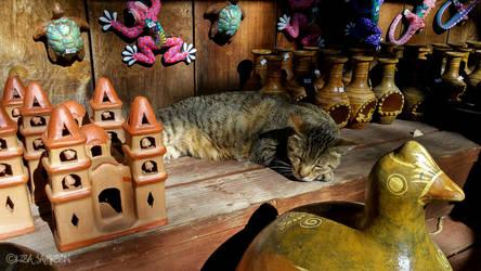 Romeo the Cat by PepstarsWorld