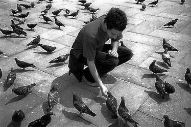 il colombo