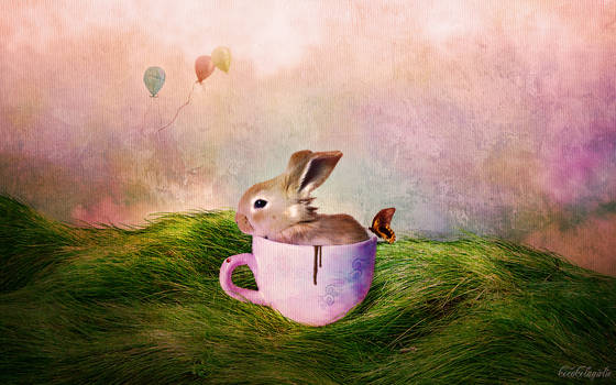 'Chocolate Bunny'