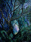 Blue Forest Path