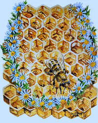 Bee with Daisies and Honeycomb by cirruscastle
