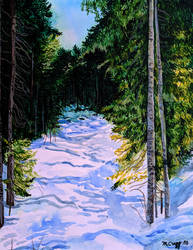 Snowy Pines by cirruscastle