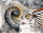 Ocular Labyrinth