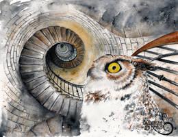 Ocular Labyrinth by bcduncan