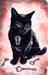 Keyhole Kitten III