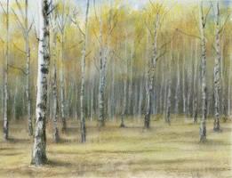 noon in the birch forest by czochanska