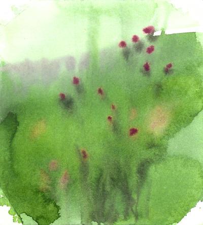22: green meadow by czochanska
