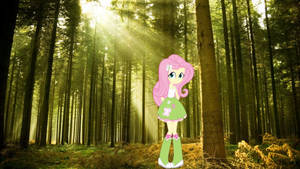 Fluttershy in forest