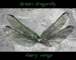 Elegant dragonfly wings by S0WIL0
