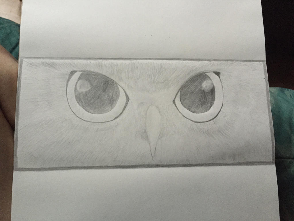 Owl eyes- work in progress  by SnowWolfx13