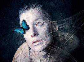 blue butterfly by milky78