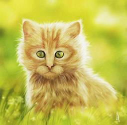 fluffy by milky78