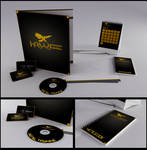 Hawk - Corporate Design