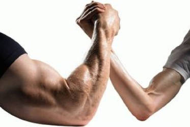 Male muscle vs Female muscle