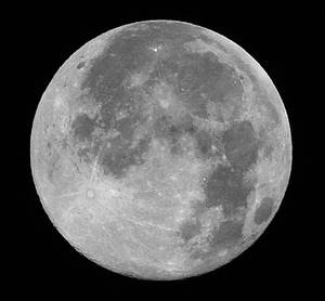 Moon Masterpiss