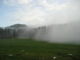 Fog attack by nasal