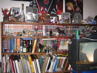 Partial Bookshelf by JiraiyasStudent