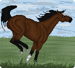 First horse with pixie bg. by Skye-Fate