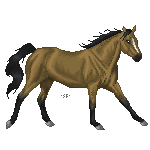 Running Buckskin by Skye-Fate