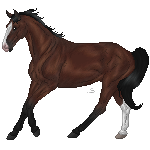 Trakehner tag by Skye-Fate
