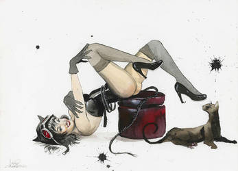 Pin-Up DC Girls_Catwoman by lora-zombie
