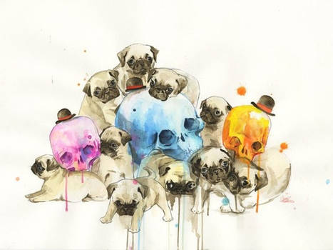Puppies and Skulls