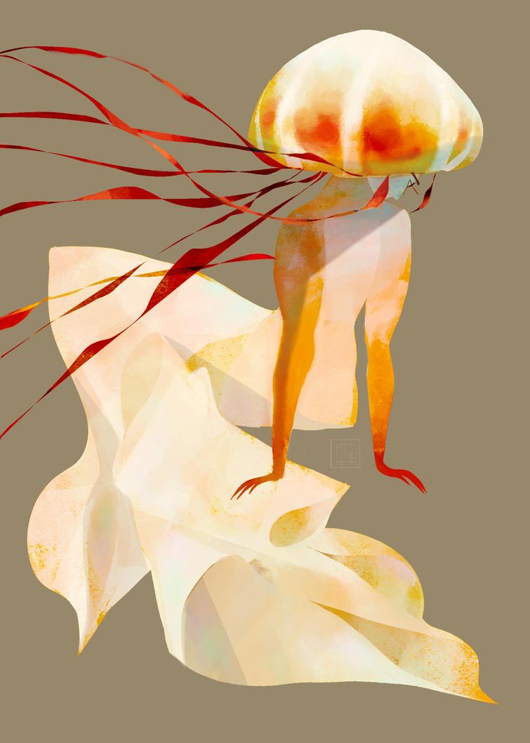 Sea Nettle by salamispots