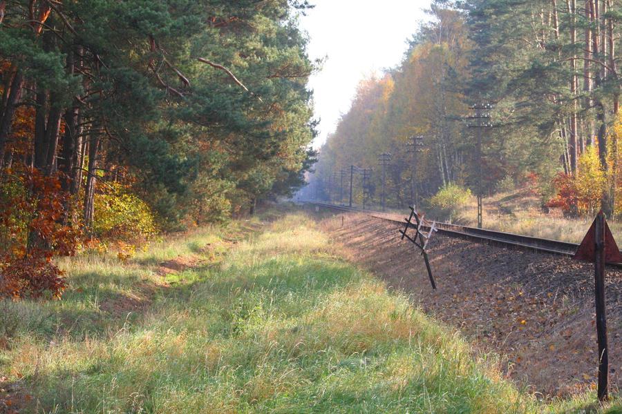 Polish Railway by czakalwe