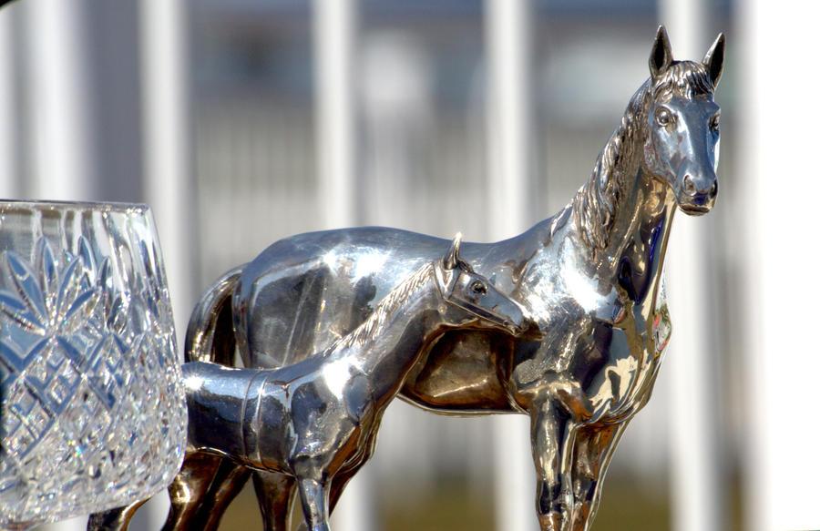 trophy by czakalwe
