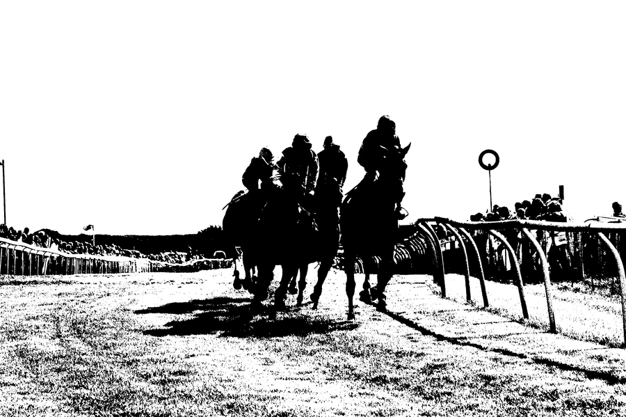 positive horse race by czakalwe